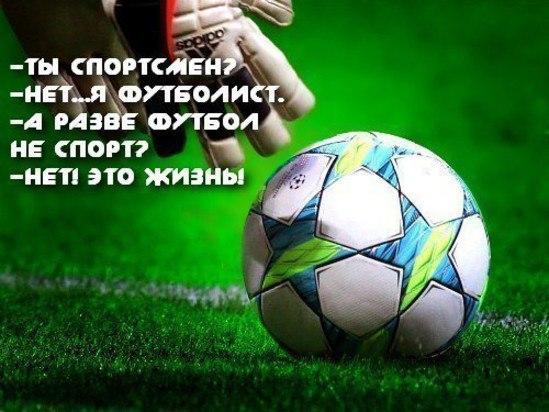 Поздравления юных футболистов объектов продаже